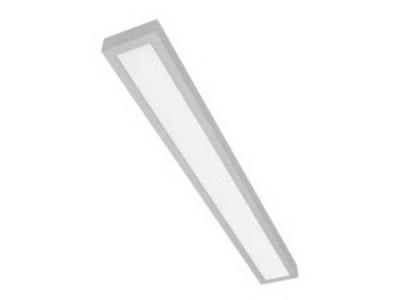 Stropné svietidlo NASLI POMPA 2x24W strieborné